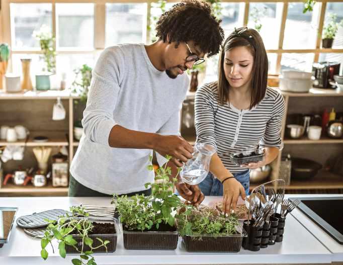 Zwei Personen gießen Kräuter in der Küche